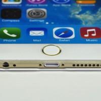 iPhone6 無地ケース入荷情報